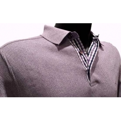 Polo Stil Park plum Checked collar