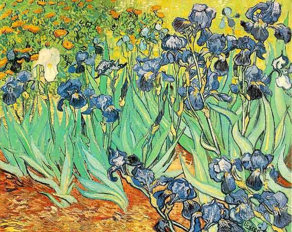 masque lavable Van Gogh